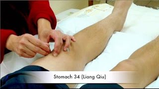 Acupuncture for Arthritis Demonstration