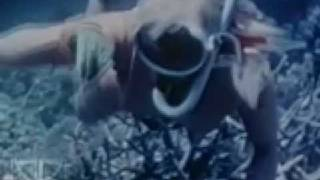 Sven Libaek - Inner Space Theme Clip. Votary Records Australia.