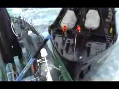 Sea Shepherds Tactics vs Japanese Whalers... Ady Gil... fail.