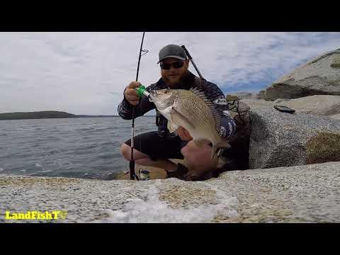 Landbased Fishing Batemans Bay NSW