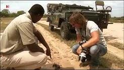 Andreas Kieling   Mitten in Südafrika 5   Der Busch