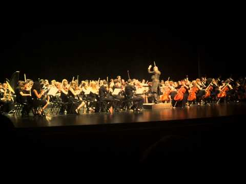 Liceo Pigafetta Musicale - 2015  -  Tchaikovsky: Waltz of the Flowers