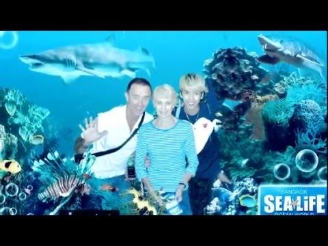 Sealife Oceanworld Bangkok