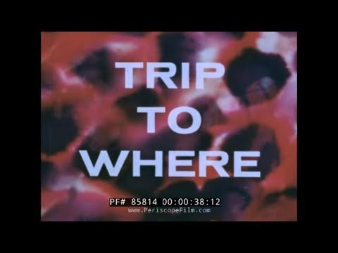 U.S. NAVY HALLUCINOGENIC DRUG SCARE FILM   LSD  TRIP TO WHERE?  85814