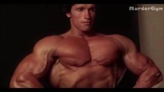 Качалка Мотивация Тренировки Шварцнегер Нарезка из Фильма Качая Железо HDMurde