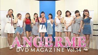 今回のDVDマガジンは船木結・川村文乃を迎えて、メンバー念願のわんこそ...