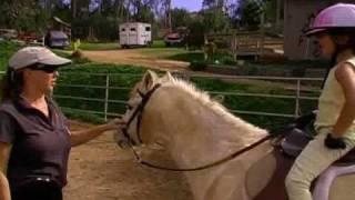 beginner horseback riding lessons