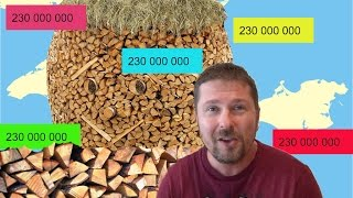 230 миллионов россиян и дрова