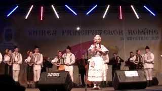 Vladuta Lupau - Asa-i romanul (live)