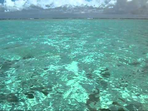 Video Los Roques