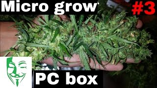 My best PC grow. My first serious micro grow and very happy with th...