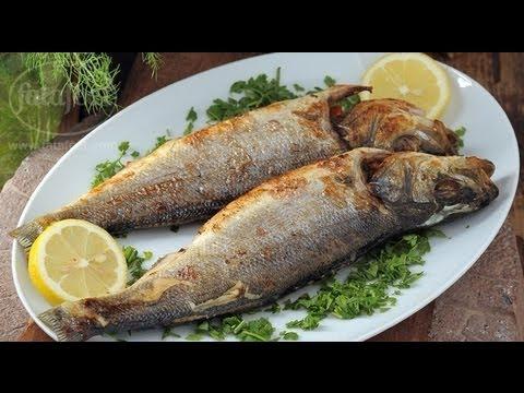 سمك سنجاري - سلمى في البيت - فتافيت