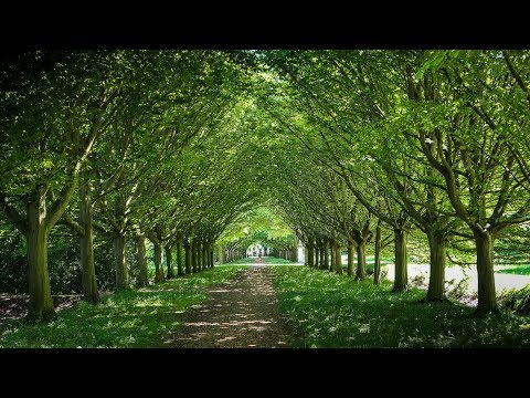 Anglesey Abbey, In Cambridgeshire.