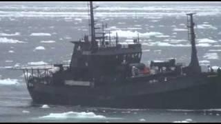 速報!2010.02.21 無国籍船ボブ・バーカー号が違法なレーザー光線で攻撃