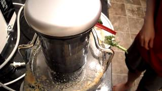 Review Breville Je98xl Juicer Recipe Carrot Swiss Chard Bok Choy Apple Kale