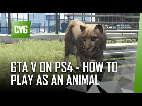 GTA V On PS4 - How To Play As An Animal. (Mountain Lion, Pigeon, Coyote, Seagull, Crow And More)