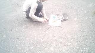 Урок знаний,для котенка 😂😂😂