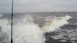 30кмч против метровой волны
