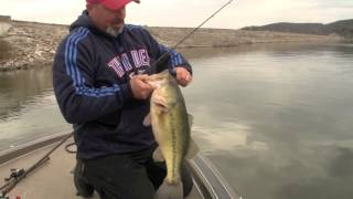 catching prespawn bass on jigs and lure flaovr