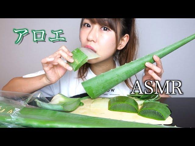 【ASMR】巨大アロエベラを食べる音
