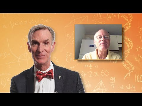'Hey Bill Nye, Does Consciousness Transcend the Brain?'