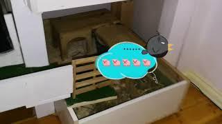 für Meerschweinchen Baby neuer Spielplatz