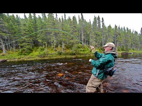 Steelhead & Salmon On A Fly - How To