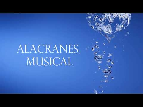 Alacranes Musical -Por Tu Amor Lyrics Duranguense version