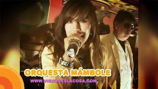 VIDEO: EXITOS MÁMBOLE (en VIVO)
