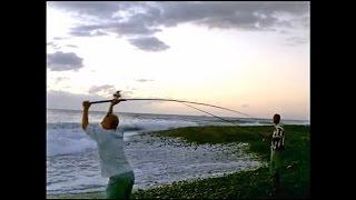 partie de pêche au port au menu civet coq 974
