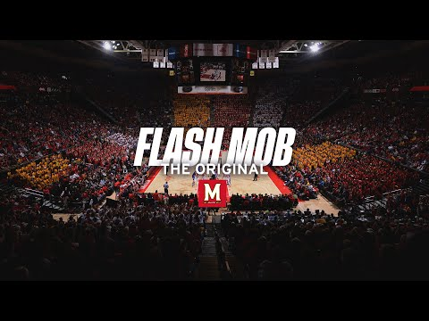 Maryland Students Flash Mob and Harlem Shake