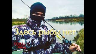 Здесь рыбы нет береговая рыбалка на выносливость
