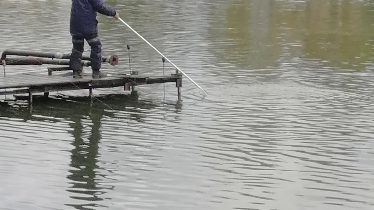 Рыбалка у бородина форум последняя