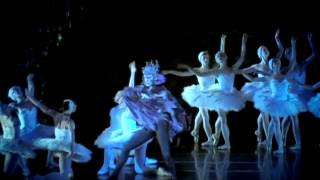 Swan Lake - Dancer Interviews - Cincinnati Ballet 2013/2014