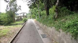 野中の細道