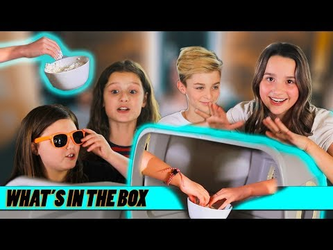 What's In The Box? Ft. Avi And London   Annie LeBlanc & Hayley LeBlanc