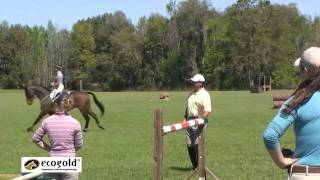 1 Canadian Eventing Team Training Session - Diana Burnett and Rebecca Howard with David O