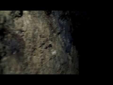 Horizontal Mine - Columbine-Twining Trail-New Mexico