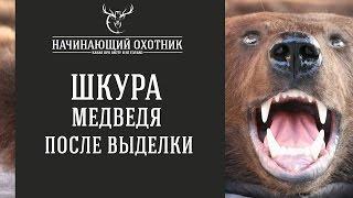 ШКУРА МЕДВЕДЯ - ОБЗОР ПОСЛЕ ВЫДЕЛКИ ШКУРЫ