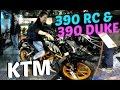 2015 KTM RC 390, 390 Duke