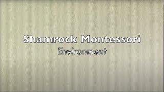 Shamrock Montessori Environment