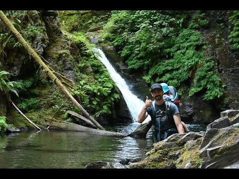 Hiking To Goldstream Falls, Vancouver Island