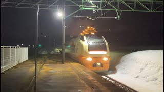 【塩沢駅】E653系1000番台 U101編成 臨時快速運用 返却回送