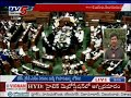 Lok Sabha Speaker Sumitra Mahajan Fires On TDP Leader For His Disgrace During The Protest | TV5 News