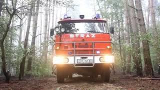 Pożar lasu w Baranowie (pow. puławski)