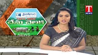 Chenu Chelaka   Haribabu Speaks About Farming  Telugu