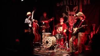 Donkey Honk Company - No Limp to Shake