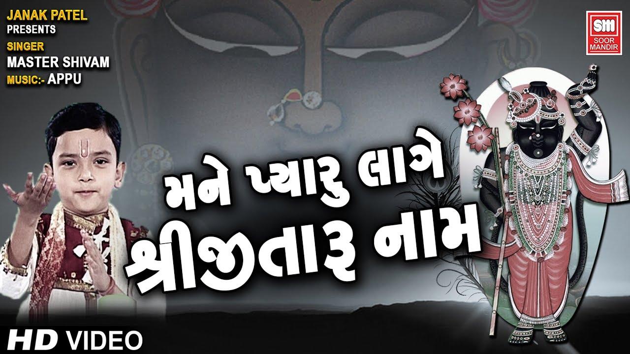 મને પ્યારુ લાગે શ્રીજી તારુ નામ | Mane Pyaaru Laage Shreeji Taru Naam | Shreenathji Bhajans