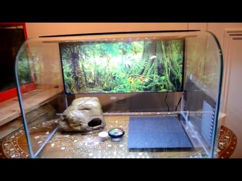 Exo Terra Habisphere Terrarium Review Youtube