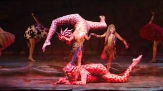 Cirque Dreams Jungle Fantasy at Busch Gardens Tampa